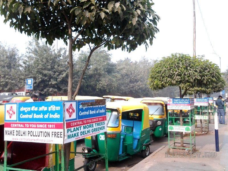 охрана деревьев в Индии