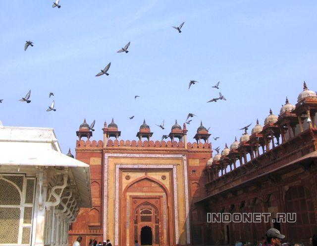 Фатехпур Сикри, Уттар прадеш, Индия