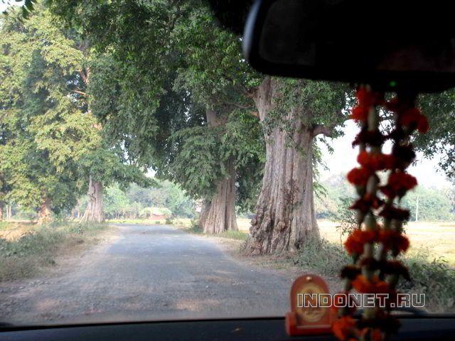 Дорога в Бихаре, фото из автомашины