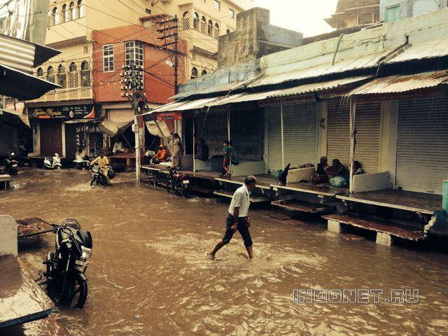 Monsoon rain. Rajasthan.