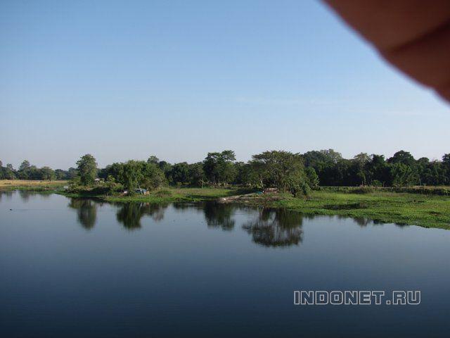 Природа острова Маджули, Ассам, северо-восток Индии