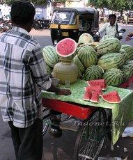 Индийский арбуз