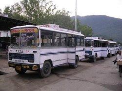 Государственный автобус