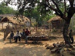 Мадья, деревня