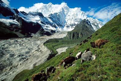 Тибет, фото russian.cri.cn