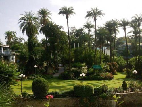 небольшой парк при гостинице Hillock в Маунт Абу