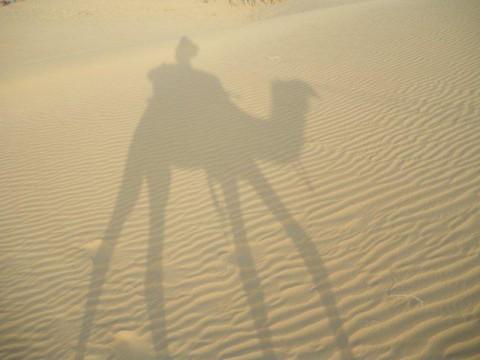 Джайсалмер, сафари на верблюдах, дюны