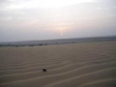 Сафари в Джайсалмере, закат в пустыне