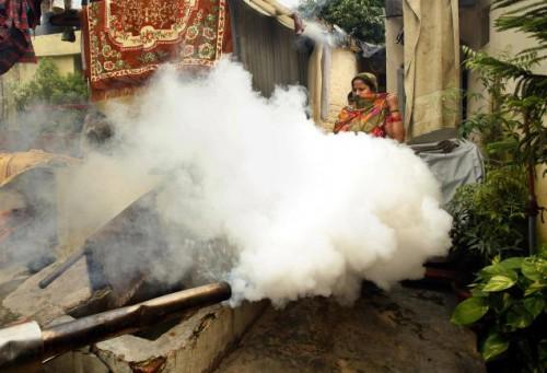 Дымовуха в Дели - для предотвращения распространения малярии и лихорадки денге в Нью-Дели