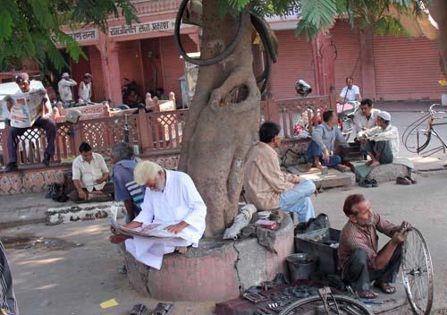 Деловое утро в Джайпуре