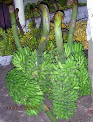 Майсор. Ветки бананов