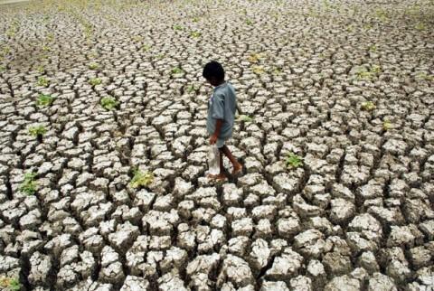 Растрескавшаяся почва в Тамил наду, южная Индия