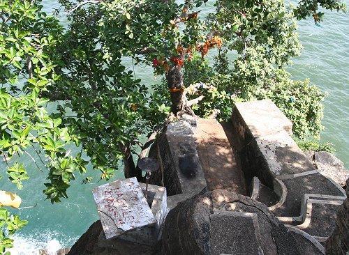 Священное дерево на краю Свами Рок