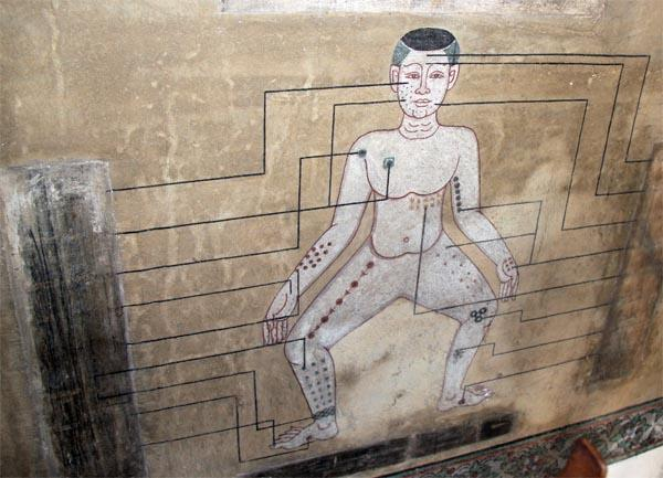 Фрески с меридианами из вата По