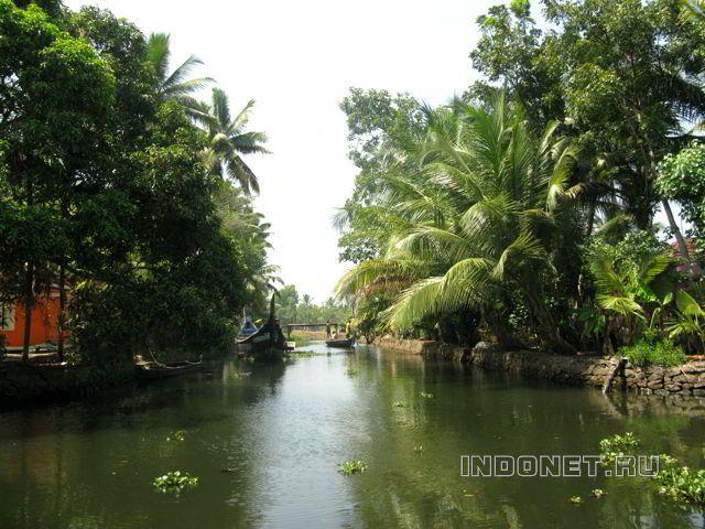 Керальские бэквотерс - каналы