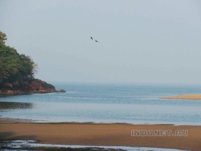 Пляж Талпона, округ Чауди(Канакона), Гоа