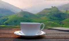 Indian Tea