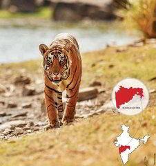 Махараштра Заповедник щедрости природы