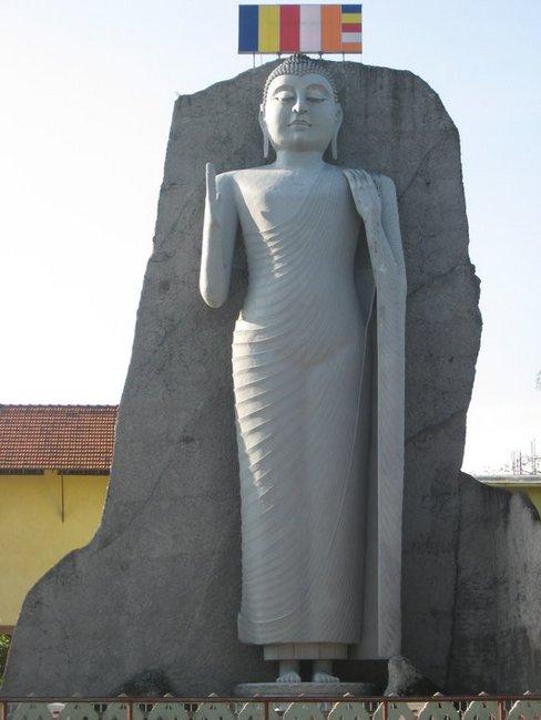 Big Budda / Dondra