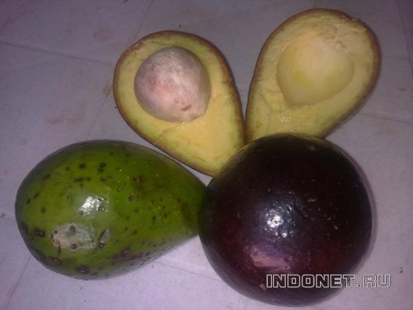 Авокадо в Индии