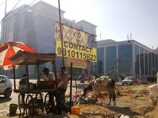 Гургаон-город контрастов