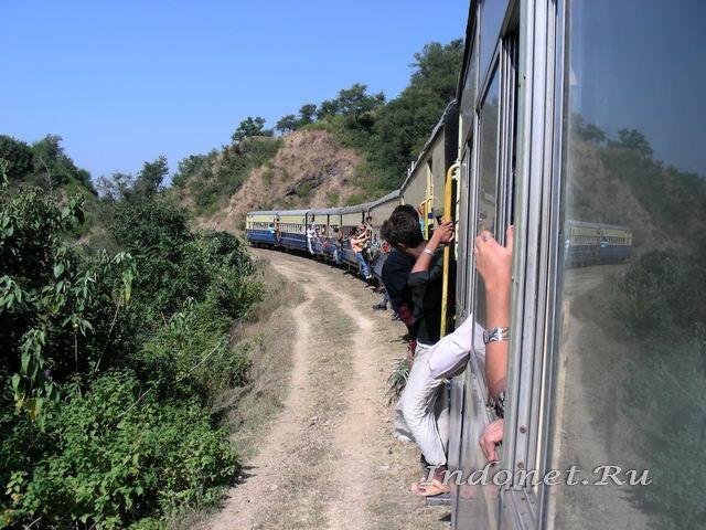 Из окна мини-поезда долины Кангра