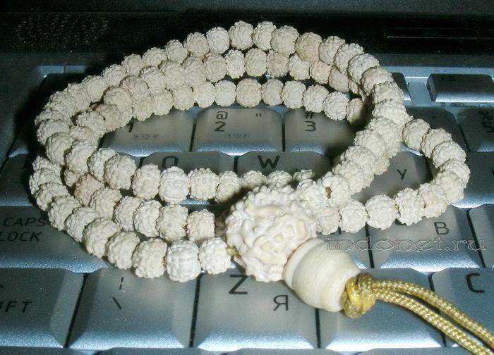 Белая рудракша