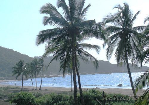 Вид на левую часть пляжа Агонды из отеля
