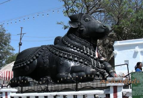Статуя Нанди, Нанди хилл близ Майсора