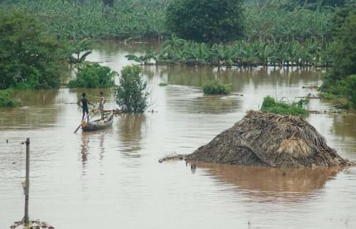 Наводнение в Ориссе, вода затопила деревни до крыш домов, фото с  www.thehindu.com