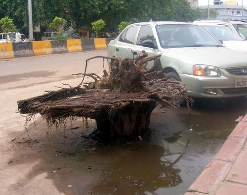 Улица в Дели